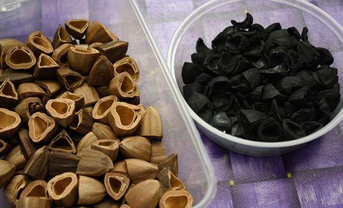 坚硬的果核能成炭,最适合用来烧烤食物。