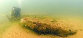 海底现1万年前冰河世纪树林