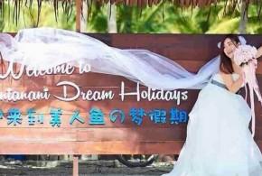 梦幻美人鱼岛  如画般优美罕见蓝眼泪