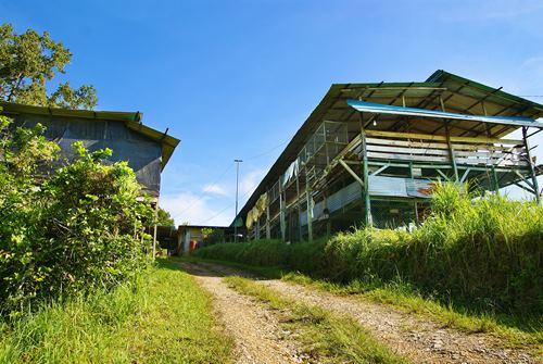 郑家牧场一隅。山坡上的木屋是羊栏。