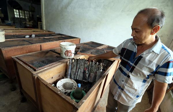 """张钦山展示蟋蟀的""""居住环境""""﹐每个木箱都有上万只蟋蟀。"""