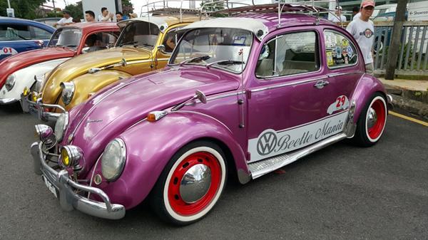 你见过如此古典但颜色依然靓丽的甲虫车吗?