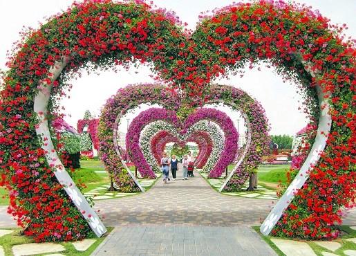 E11 miracle garden