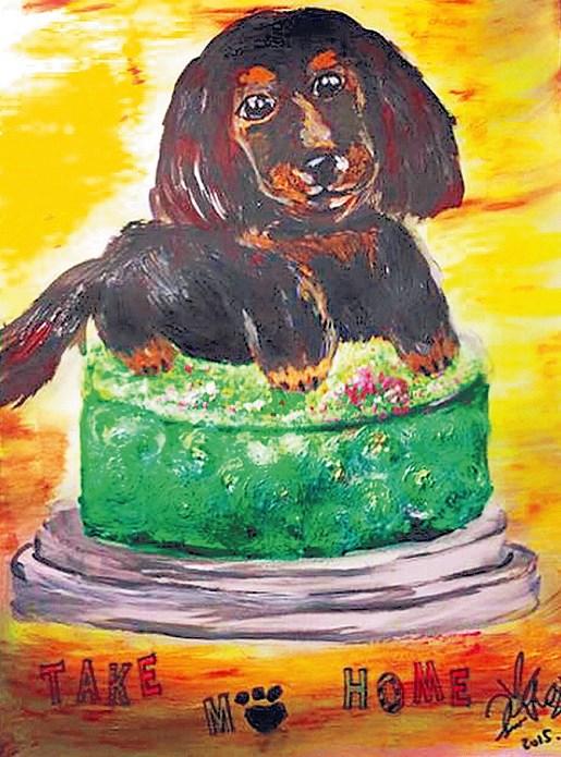 王思平画的MoMo可爱油画像,后来被拿去爱心义卖。 MoMo年纪虽大玩心还是很重,常上演离家出走的戏码,最久一次还离家两天,把王思平吓坏了。