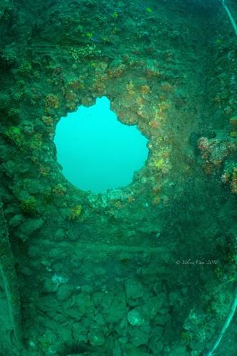 可惜遭受破坏后,好多珊瑚活不了,鱼儿也不见了,撩起尘埃一片。