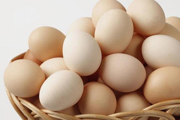 """""""鸡蛋""""的图片搜索结果"""